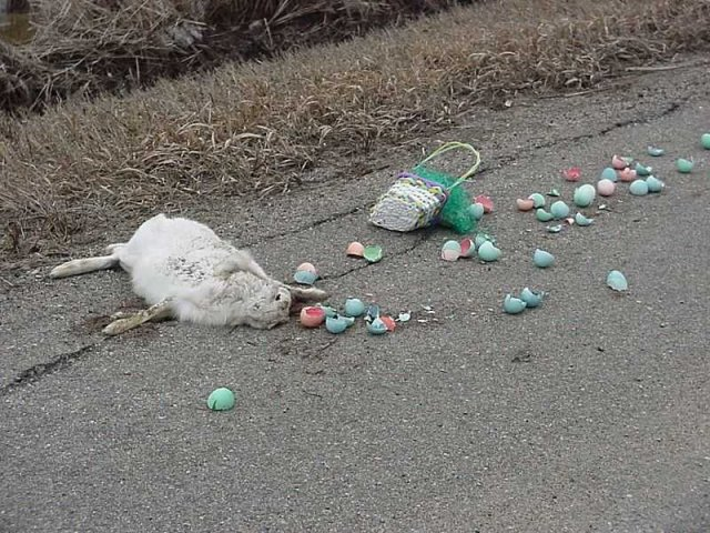 Easter_Is_Cancelled.jpg